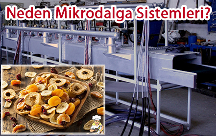 mikrodalga kurutma sistemleri